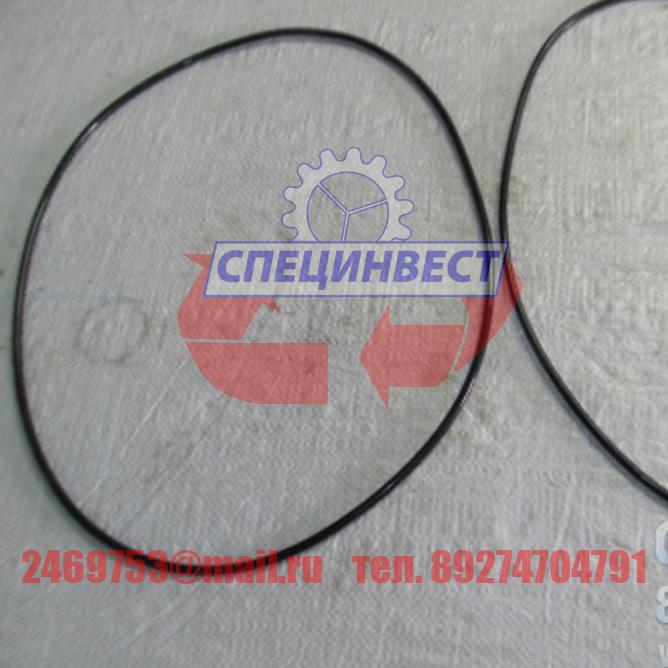 Кольцо уплотнительное 300х5 головки поворотной CSN 02 9281